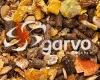 garvo-1014-alfamix-kangoeroe.jpg
