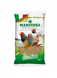 Manitoba pinty eleség 1kg