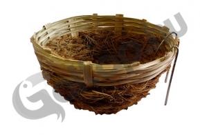 Kókuszpintyfészek akasztóval 8 cm