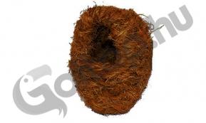 Kókuszrost pintyodú nagy